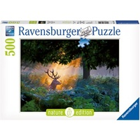 Rburg - Magical Light Puzzle Nature